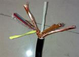阻燃型计算机用屏蔽电缆ZR-DJYPV价格