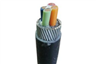 电力电缆VV32 2*240价格