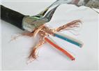DJYVPR-10*2*0.75DJYVPR軟芯屏蔽計算機電纜