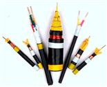 控制电缆-KVVP2价格