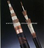 耐高温-耐油-防腐蚀控制电缆KFF价格