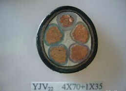 vv铜芯电力电缆产物供应价格