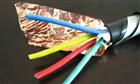 2018年塑料绝缘屏蔽控制电缆KVVP2