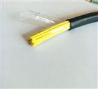 KFVP-24*1.0mmKFVP氟塑料耐堿控製電纜KFFRP軟芯屏蔽電纜