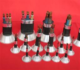 JHS深水井专用电缆2X16mm2