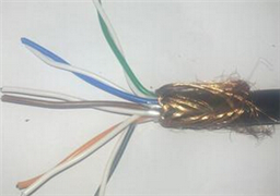 聚氯乙烯护套计算机软电缆 DJYVP2R 3*2*1
