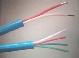 ZR-HYAP22大对数电缆