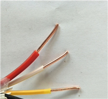 什么是NH-KYJV22电缆