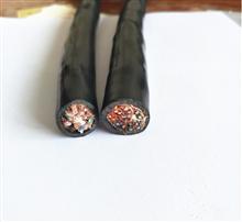 DJYVP3-22-14×2×1.0㎜²钢带铠装计算机电缆