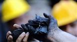 碳材乐投letou国米