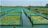 渔业养殖水质乐投letou国米