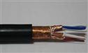 阻燃计算机电缆ZR-DJYPVP  电子计算机电缆