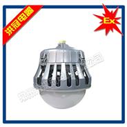 HGC203-L80II防爆免维护LED照明灯(工业照明灯)