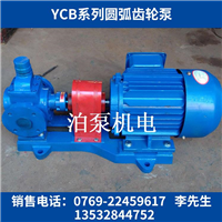 泊头YCB系列船用圆弧高温齿轮油泵
