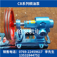 CB型稠油泵_外橋式齒輪泵_泊頭高溫油泵