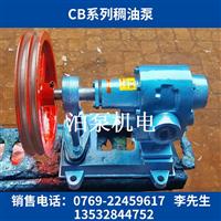 CB型稠油泵_外桥式齿轮泵_泊头高温油泵