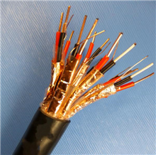 DJYPVP,DJYVP22 DJYVP22钢带铠装计算机电缆