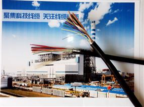 计算机电缆ZRB-DJYVRP-5x2x0.6