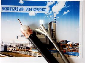 铜网屏蔽电缆计算机电缆DJYVRP 3*2*1.0