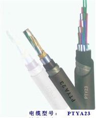 铁路工程**信号电缆PZYA23价格