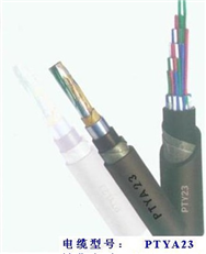 铁路信号电缆PZYA,PZYA23规格价格