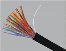 CPEV-对绞式通信电缆30×2×