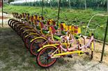 乐湖生态园绿道单双车骑行