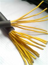 铠装控制电缆KVVP22 10*1.0