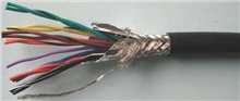 计算机屏蔽电缆DJYVP-1×2×1.0㎜²