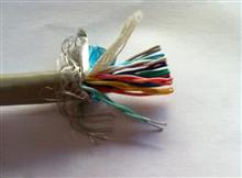屏蔽双绞电缆NH-RVSP