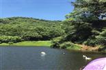 乐湖生态园风光