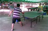 乐湖生态园乒乓球