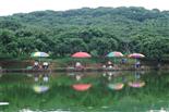 乐湖生态园钓鱼