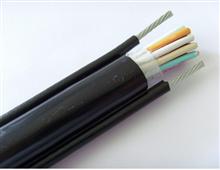 阻燃控制电缆ZR-KVVP22