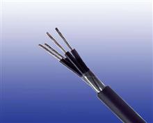 矿用竖井电缆MHYA32(5-100对)