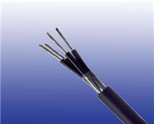 铁路信号电缆PTYA22-42芯