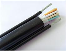 耐高温控制电缆KFVR22...