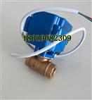 【實物】XJ-08電動內螺紋銅球閥DN8 2分 1/4電壓AC220V