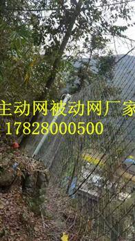 批发RXI-100被动防护网RXI-200被动网