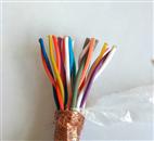 计算机电缆DJYVP3*2*1.0