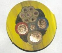 MCPTJ监视型金属屏蔽橡套软电缆