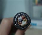 本安计算机电缆 IA-DJYJVP2R