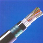 HYA22双层钢带铠装通信电缆