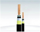 HYV-150*2*0.5大对数电话电缆