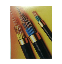 KVV22(2-61芯)多芯铠装控制电缆