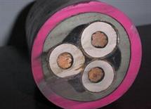 YZW野外用橡套电缆4*10+1*6