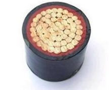 国标YZ橡皮电缆