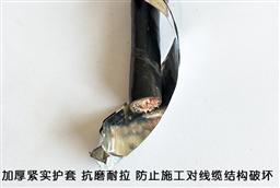 ZRB-DJYPVP-3x3x1.0阻燃计算机屏蔽电缆