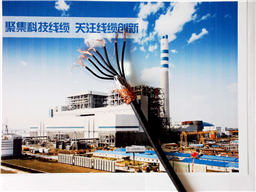 RVVZ电源用阻燃软电缆