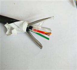 阻燃型ZRC-KVVP2-22屏蔽铠装控制电缆